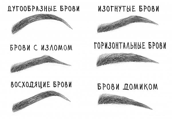 Типология бровей