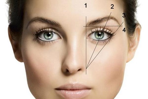 Диагонали от крыла носа, по которым ищут верхние точки бровей