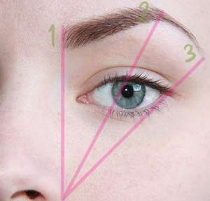 Определение формы брови